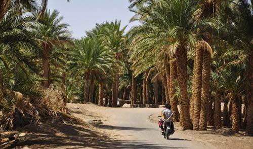 10 پیشنهاد برای کویرگردی در ایران
