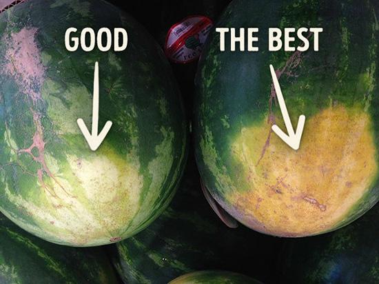 همه چیز درباره هندوانه، این میوهی یلدایی